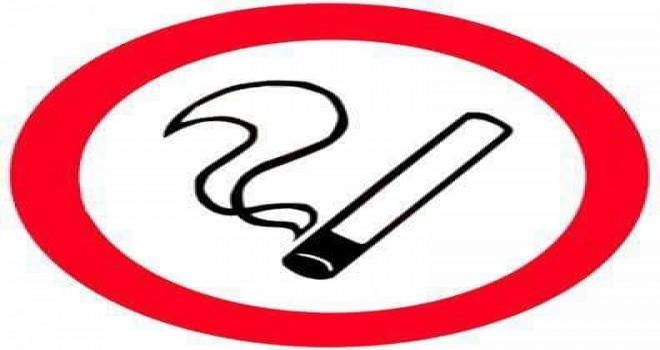 Belçika Flaman Bölgesinde Arabada Çocukların yanında sigara içmek yasaklandı, 1000 Avro Ceza