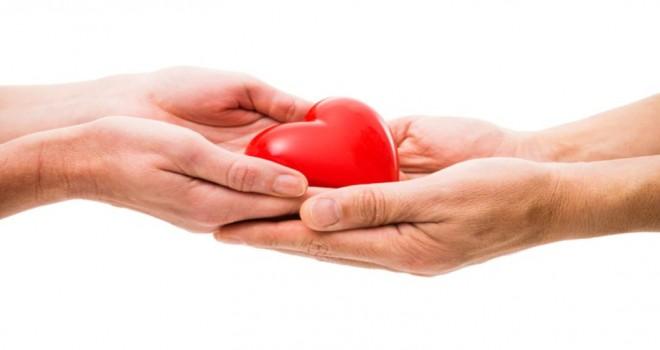 Belçika'da bugün 250 Flaman Belediye İdaresi, organ bağışçıların kaydı için açık tutuluyor