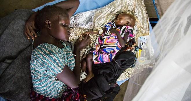 FAO'dan Somali için 236 milyon dolarlık yardım çağrısı
