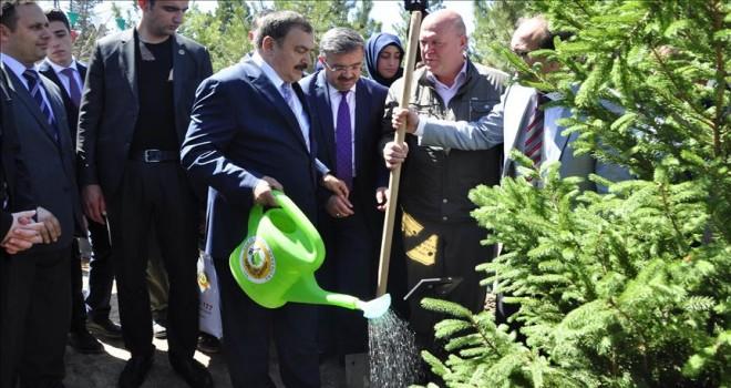 Orman ve Su İşleri Bakanı Eroğlu: Ağacın, yeşilin değerini ve önemini biliyoruz