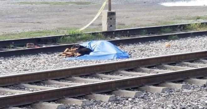 Sonsuza dek sadık dost: köpek ölen sahibinin bașından ayrılmadı