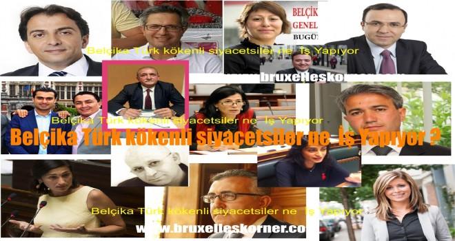 Belçikalı Siyasetçiler 49 Bin Ek İş Yapıyorlar, Belçikalı Türk kökenli siyacetsiler ne İş Yapıyorlar ?